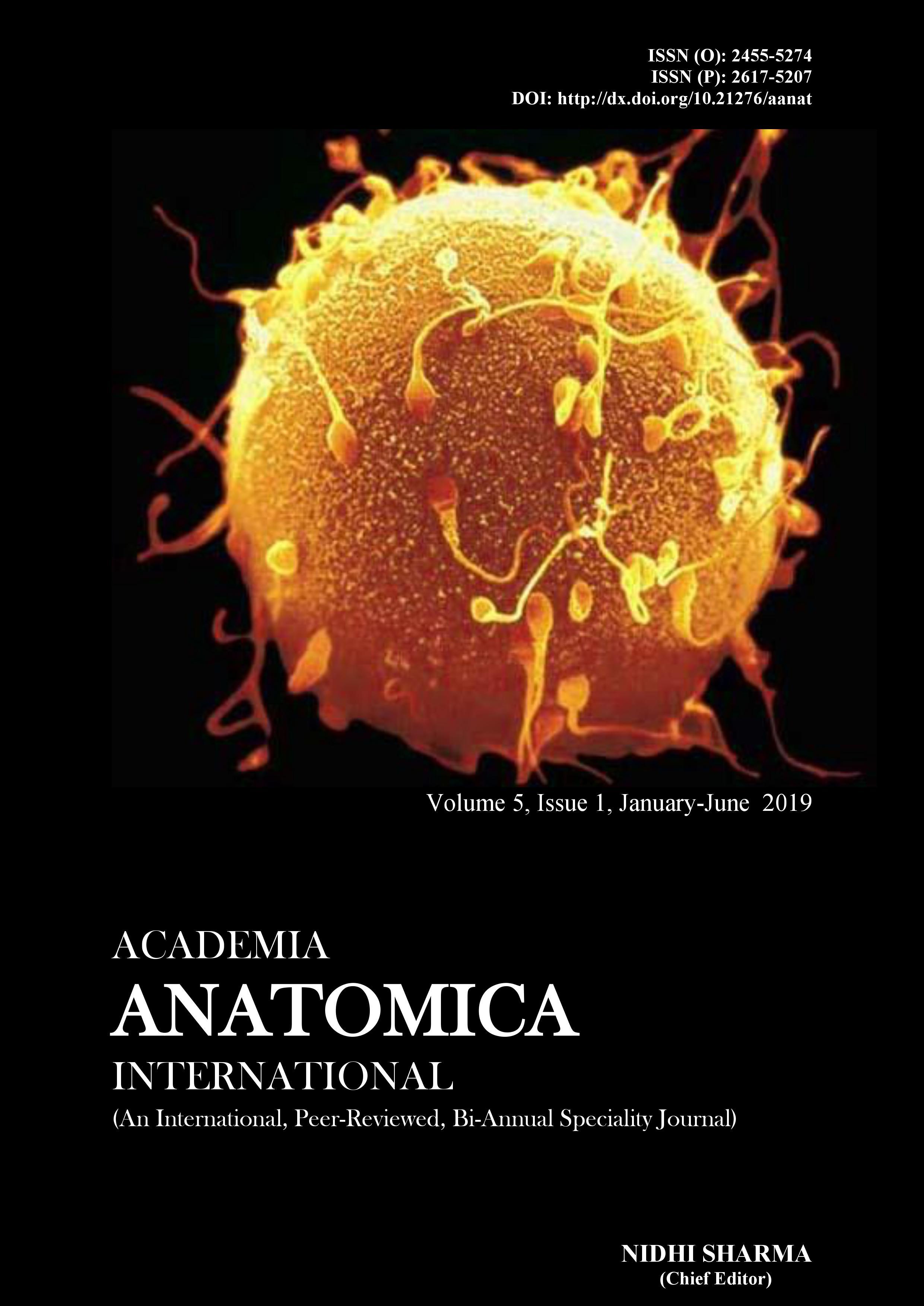 Academia Anatomica International